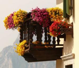 zwiebelblumen kaufen und richtig pflanzen. Black Bedroom Furniture Sets. Home Design Ideas